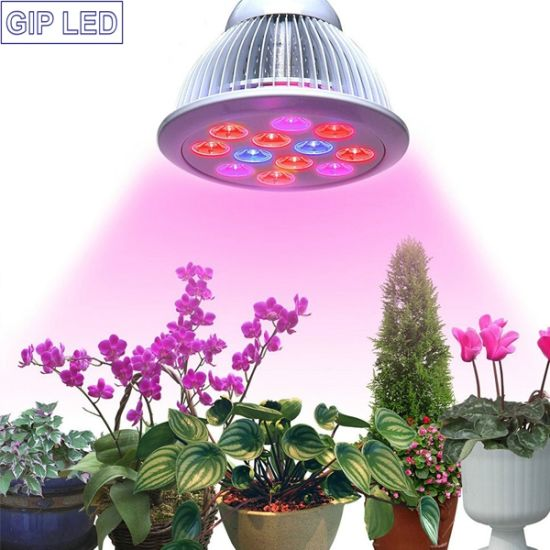 12W 24W Miracle Grow Plant Light for Hydropoics Greenhouse Organic