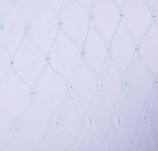 1.0mm High Quality Fishing Net pictures & photos