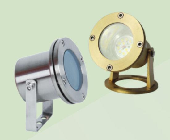 6W IP68 LED Garden Spot Light (HGL-16B-1 2-BR ST)