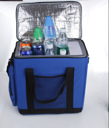 Electronic Mini Fridge 14liter DC12V with Cooling and Warming for Car, Outdoor Activity Use pictures & photos
