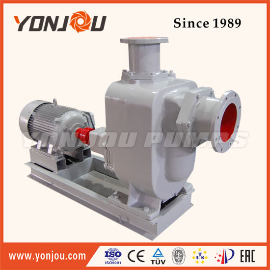12 Inch Multistage Centrifugal Diesel Dewatering Pump pictures & photos