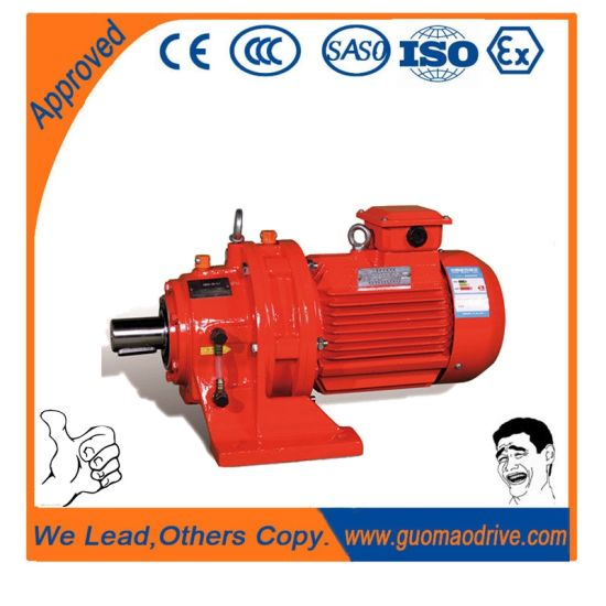 Cycloidal Pin Gear Reducer Horizontal Gearbox Made in China