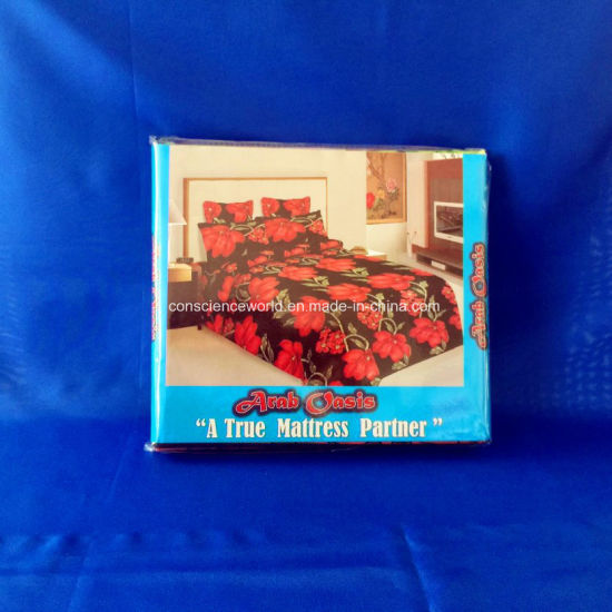 100%Polyester Pigment Printed Bed Sheet 2PCS Bedding Set pictures & photos