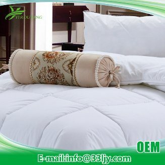 OEM Single Luxury Down Comforter for Hotel pictures & photos