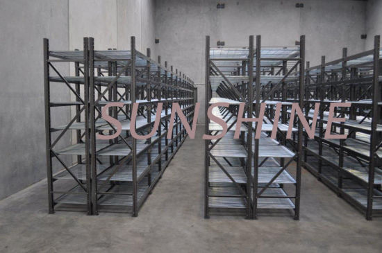 Longspan Shelving (Wiremesh) pictures & photos