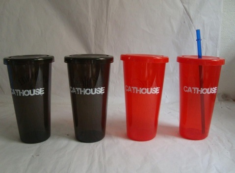 BPA Free Double Wall Plastic Cup with Lid and Straw