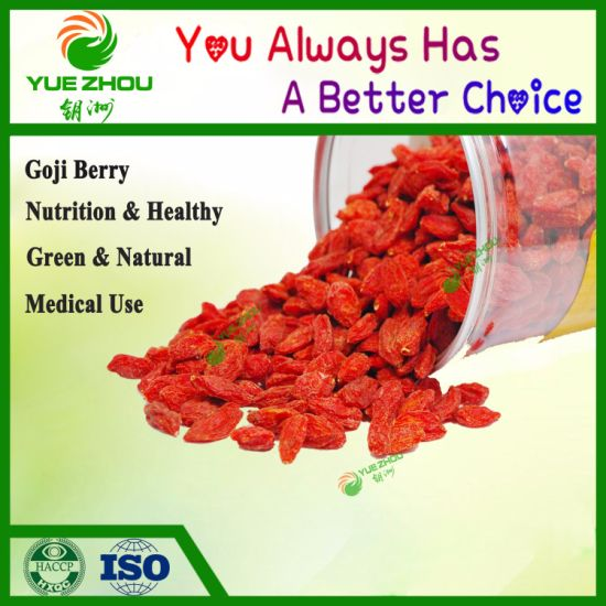 Organic Dried Goji Berry From China with High Quality