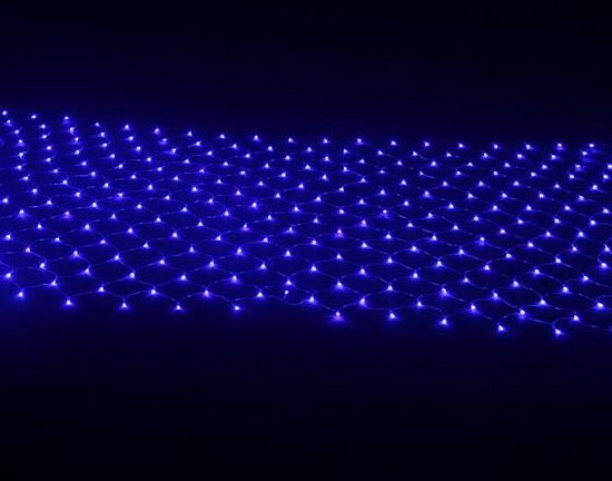 2*2m Outdoor LED Net Light Holiday Time Christmas Light pictures & photos
