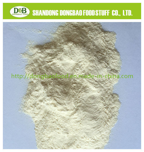 China Dehydrated Garlic Powder 100-120mesh with Strong Flavor Savory