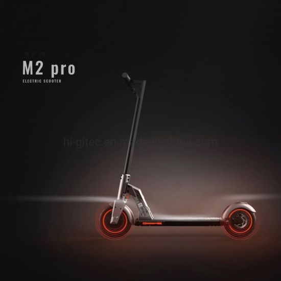 2020 China Factory New Product Dual Absorption Shocks Kick Scooter with UL Approved