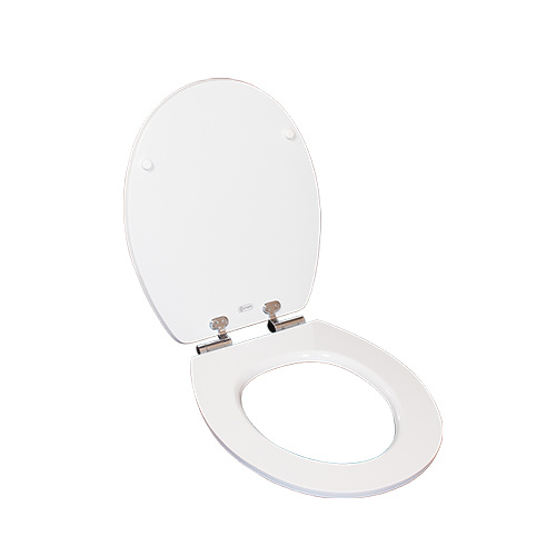 Fine Unique Decorative Clear Polyresinacrylic Toilet Seats Lid Covers With Footprint Picture Machost Co Dining Chair Design Ideas Machostcouk