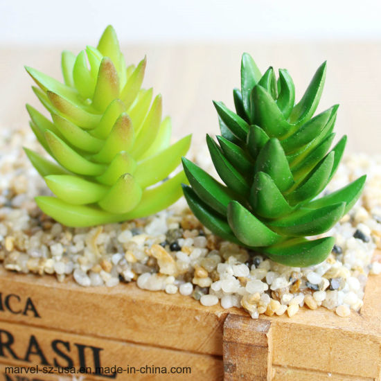 Tower Shape Artificial Succulent Plant Bonsai for Home Decoration pictures & photos