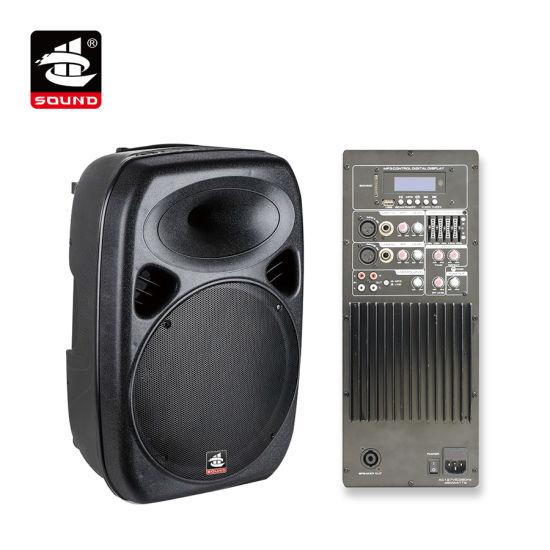 China 15 Inch 250W USB SD FM EQ Echo Plastic PA Active