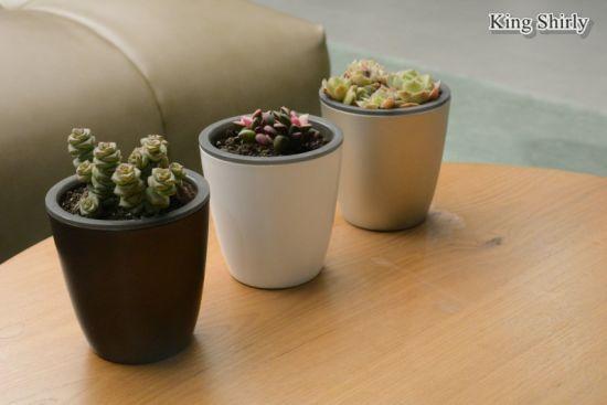 China Home Garden Water Storage Liner Mini Planter Nursery Pot