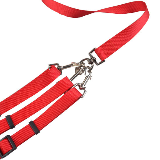Padded Soft Handle Breakaway 3 Heads Pet Dogs Leash