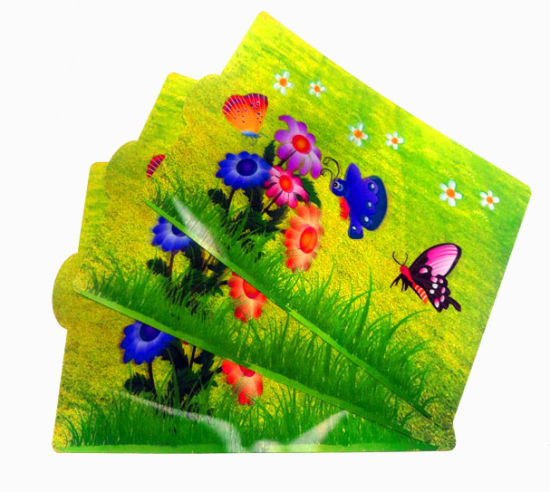 3D Lenticular Depth Landscape Card with Flowers and Butterfly pictures & photos