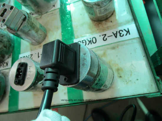 Professional Quality Control Inspection Service for Plug pictures & photos