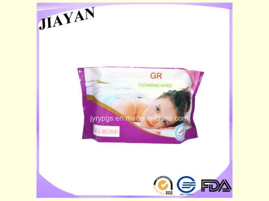 25PCS OEM Brand Femal Wet Wipes (JY02100)