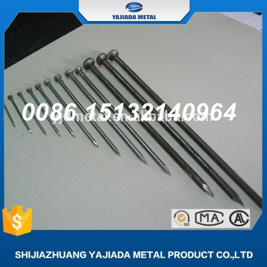Common Iron Nails Wood Factory Supply