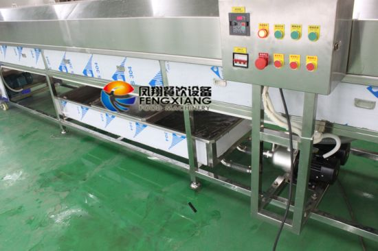 Dup-5000 Vegetable Fruit Cleaning Machine by Top & Bottom Water Spray pictures & photos