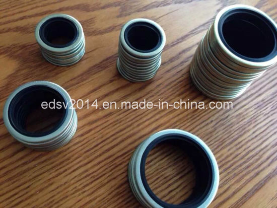NBR FKM Viton Rubber +Steel Bonded Seals pictures & photos