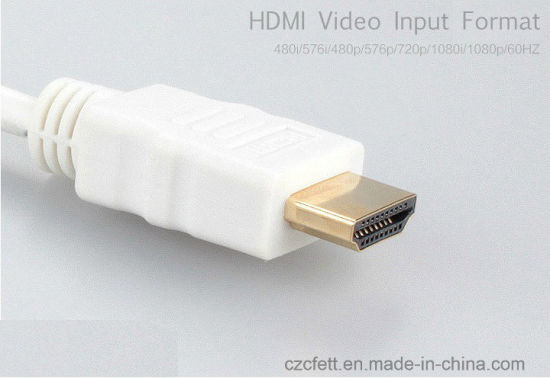 HDMI to VGA Conversion Cable pictures & photos