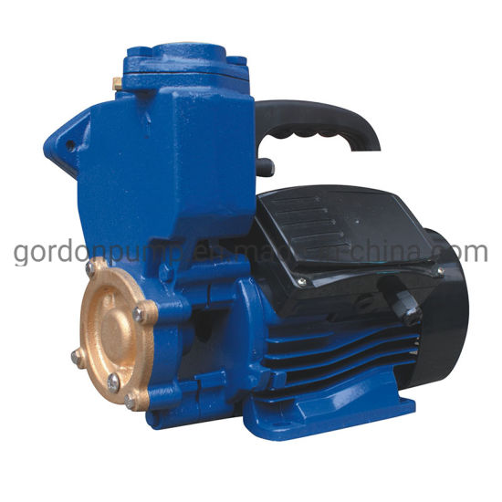 Factory Direct Supply Vortex Self Priming Peripheral Water Pump pictures & photos
