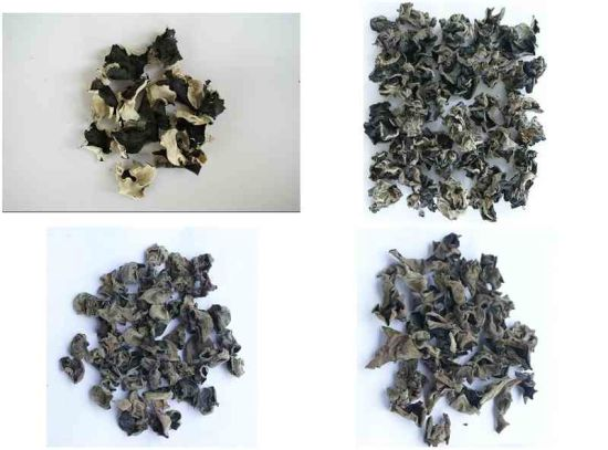 Top Quality Black Fungus pictures & photos