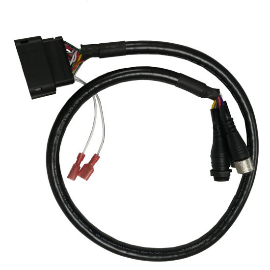 China Universal Customize Wiring Harness Manufacture for 54 Pin Cable for  Ford Sync Apim Connector for Factory Automobile - China 54 Pin Harness, Wire  Harness Manufacture
