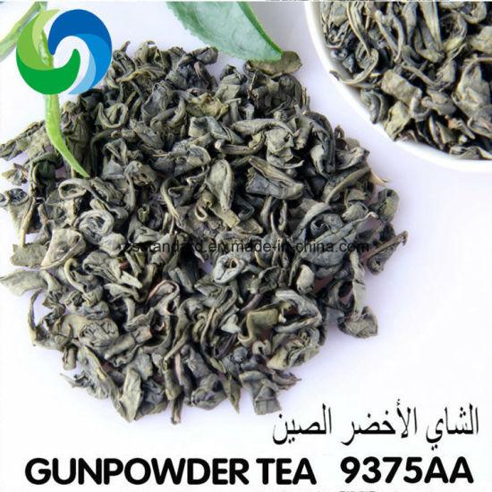 9375AA Gunpowder High Moutain Tea Factory Price Wholesale China Green Tea Organic
