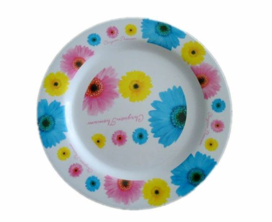 China Factory Supply Unbreakable Melamine Dishes