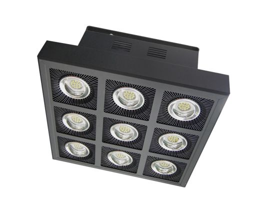 LED Stadium Light IP65 Anti-Salt Fog Square Gym Lawn 200W 400W 600W 800W 1000W 1200W 1600W 2000W Factory Wholesale Price