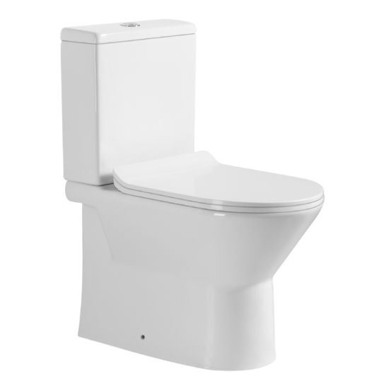 Rimless Water Closet (B-100) pictures & photos