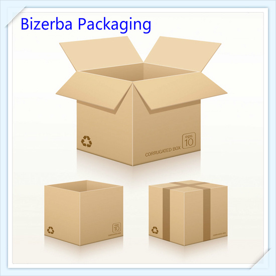 Promotional Custom Corrugated Shipping Folding Carton pictures & photos