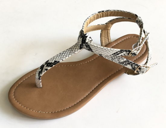 New Shoes Lady Sandal Made in Guangdong Dress Shoes