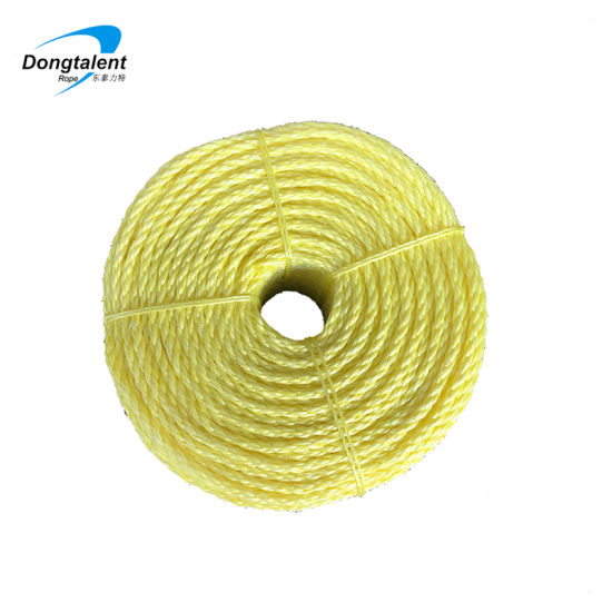 China High Quality Polypropylene PP/PE Twist Danline Nylon