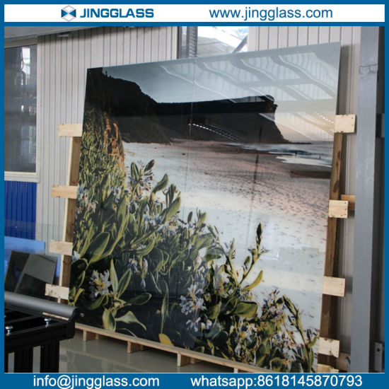 Tempered Stained Glass Art Decorative Glass Ceramic Digital Printing Silkscreen pictures & photos