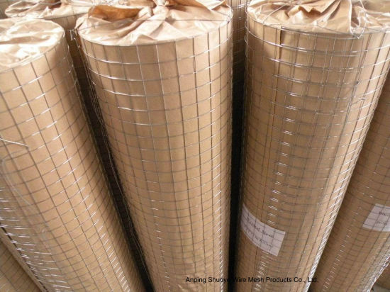 Anping Factory Hot Dipped Galvanized Welded Wire Mesh/ Stainless Steel Welded Wire Mesh pictures & photos