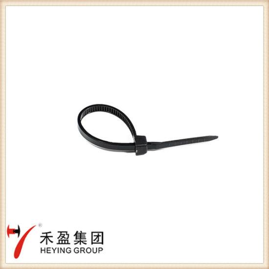 f845a7f4e865 94V-2 Heat-Resistant Nylon Cable Tie Plastic Zip Tie pictures & photos