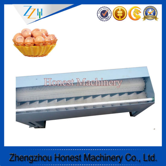Stainless Steel Automatic Washer for Egg pictures & photos