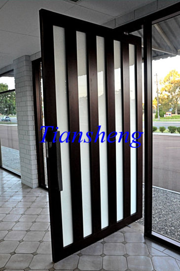 Modern House Design Aluminum Pivot Door