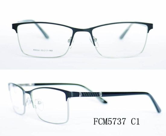 Stainless Steel Optical Eyewear Frame pictures & photos