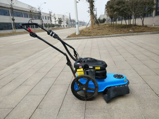 Lawnmower with 14 Inch Wheels for Hobby Garden