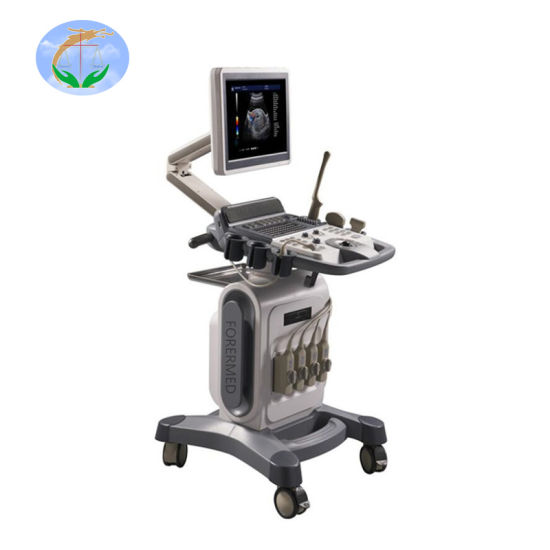 4D Color Trolley Ultrasound Diagnosis System