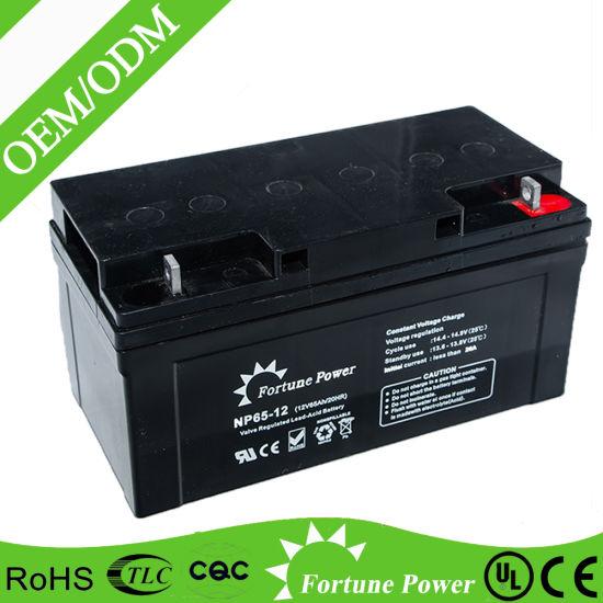 Deep Cycle Gel 12V 65ah Sealed Heavy Duty Motive Battery