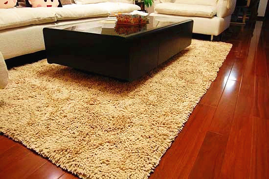 High Quality Chenille Floor Carpet Mat Rug with Polyester pictures & photos