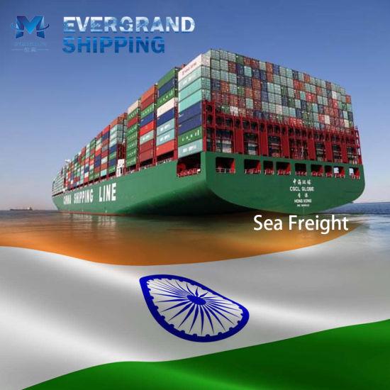 Professional Sea Freight Shipping Service From China to India/Chennai/Mumbai