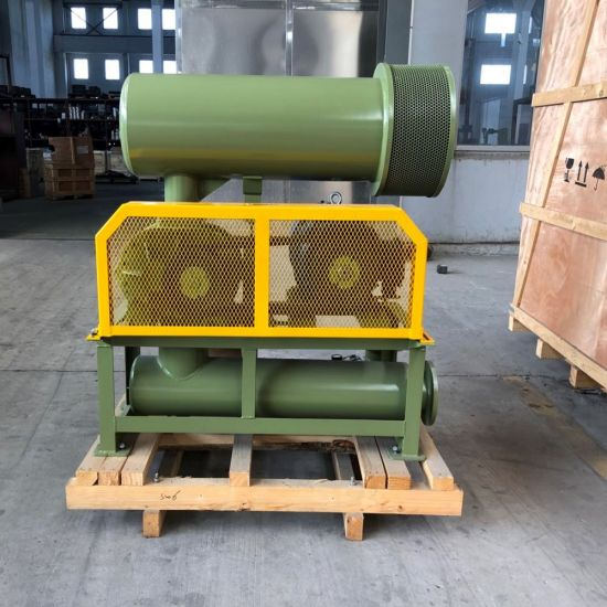 Professional Wrought Iron Three Lobe Roots Blower Bk6008 22kw with Pressure 10-80kpa for Areation and Transport Air. pictures & photos