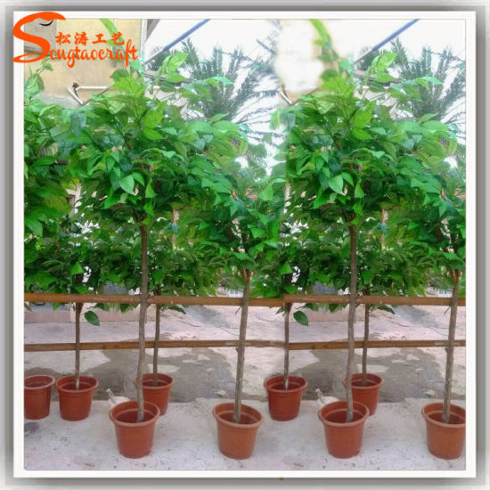 China Supplier Artificial Bonsai Coffee Tree Or Cocoa Tree China Artificial Topiary Trees And Artificial Bonsai Tree Price Made In China Com
