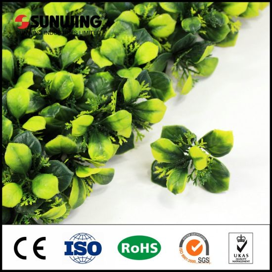 2017 UV Protection Outdoor Fake Plants Hedges for Screen Covering pictures & photos